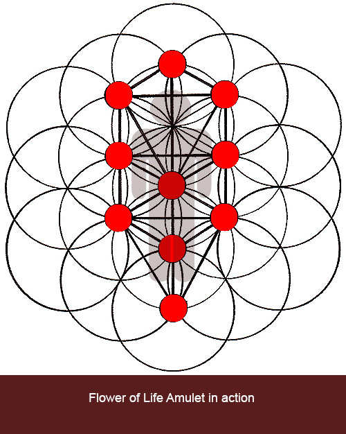flower of life in action